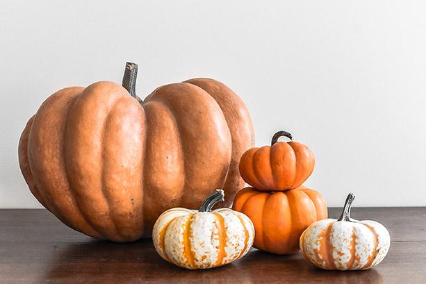 Pumpkins (1 of 1)